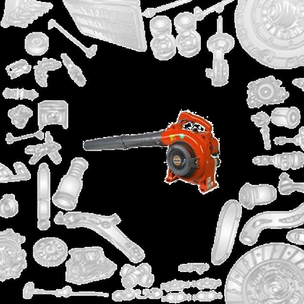 Immagine per la categoria Ricambi Soffiatori Oleomac